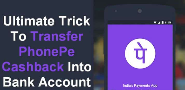 PhonePe Gold Offer-Trick To Transfer PhonePe Cashback into Bank